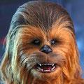 Chewbaccaチューバッカ