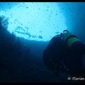 Arche sous marine  - Archipel de Riou - Mai 13 © Florian Bernier