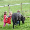 Susi und Ricco bevorzugen Getreidemüsli, Gras und lassen sich gerne striegeln.
