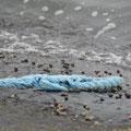"""Blauer als das Meer"" - Annika F. (Oberstufe+)"
