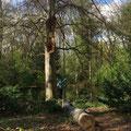 Feriengrüße aus Berlin draußen im Tiergarten von Carolin S.