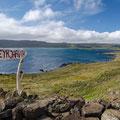 Kleine Details im Vordergrund lockern das Bild auf und lenken den Blick auf das Hauptmotiv: die weite Landschaft des Fjords.
