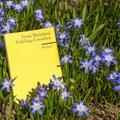 Frühlings Erwachen - literarisch genommen von Jochen S.