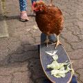 """""""Huhn auf Abwegen"""" von Perinur, Nele und Josefine"""