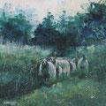 """""""Drentse schapen"""" 2018, acryl en inkt op canvasdoek, 60x120cm"""