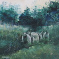 """""""Drentse schapen"""" 2018, acryl en inkt op canvasdoek, 60x120cm NIET BESCHIKBAAR"""
