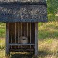 Bienen Lehrstation auf dem Marchandelweg