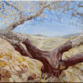 Old corkoak- acryl and stones on canvas- 100 x 50 cm - SOLD -