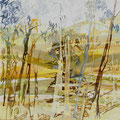 Landscape with eucalyptustrees - acryl and sand on canvas - 61 x 61 cm