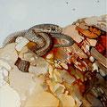 As tres moscas - óleo com areia na tela - 60 x 60 cm