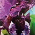 Fragua de sombras, 2008, óleo sobre lienzo, 195x145 cm