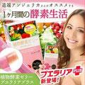 Plant Enzyme Jelly Pueraria Plus, 10g x 30 pcs