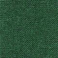 Canvas dunkelgrün Nr. CV37