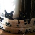 Mia und Fiona