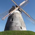Auch in Ostwestfalen gibt es Windmühlen...