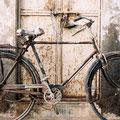 Le vélo.