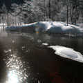 3月上旬・上高地田代湿原