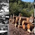 01.10.2014 - Bei Zanella Bäni das Lärchenholz für die Fassade ausgewählt und mit Igor die Bearbeitung besprochen. Im Oktober sägen, samt Saum lagern, im Dezember absäumen und ab dann trocknet ATT das Holz im Walliserwind selber. Dazu später mehr.