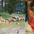 23.07.2016 - Im Holz gewesen - Zappie nicht gehalten - Blut geschwitzt - Glück gehabt.