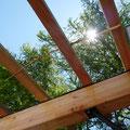26.05.2017 - Der erste eingeflochtene Ast in der Pergola! Lärche, frisch abgehauen, von Hand, sofort mit dem Opinel geschält und noch grün eingebaut. Im Verlaufe der Zeit soll ein ganzes Dach entstehen.