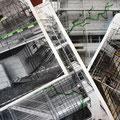 23.09.2014 - Seit langer Zeit die Frage; Wie ziehe ich die bis zu 7m hohe Bretterwand mit nur 5m erhältlich langen Brettern hoch ohne einen fatalen Horizontalschnitt der Fassade zu erlangen was das gesamte Hausbild, den angepeilten Charakter kaputt mäche.