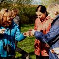Biologin Dr. Anne-Kathrin Jackel (links) leistete den Erzieherinnen bei ihrer Bestimmungen wertvolle Hilfe.
