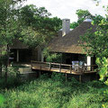 ROYAL MALEWANE - THE LODGE
