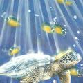 Tortue des mers détail - Réalisée sur toile à coller