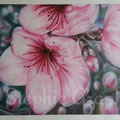 """'Printemps ,Fleurs de PRUNUS ©"""" sur papier 50x70cm.(d'après une de mes photos prise dans mon jardin)"""
