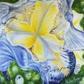L' Iris.100x100