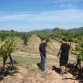 Unterwegs im Weinberg mit Josep Duran
