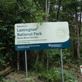 Nationaal Lammington park in Binna Burra