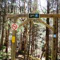 der nächste Trail - Tippen Lot ...