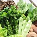 朝採りの新鮮な山菜・・・