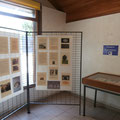 Espace exposition à la Maison du Lac et de la Forêt © Office de Tourisme de Sillé le Guillaume