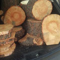 Wood stumps and slices - Decor, Centerpieces, Dessert