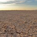 Desierto de Viesca, Coah