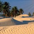 El Sáhara - Douz