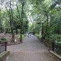 都立林試の森公園②