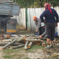 Holzlieferungen