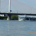 Nordbrückenansicht von der Wiese aus