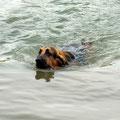 schwimmen tut gut