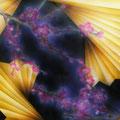 「紅梅の宴」 2010年作 第12回ドローイング・デッサン・版画コンクール・入選