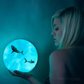 "<b>Underwater World (302/365)</b><br>Credit: <a href=""http://cheyenne75.deviantart.com/"">Shark</a> 