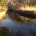 2013年4月11日、出合い。新名庄川側は砂堆積被害大きい