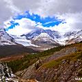 Aussicht auf den Athabasca Gletscher vom Wilcox Pass, , Jasper NP