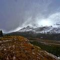 Wilcox Pass, , Jasper NP