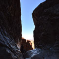 Big Bend NP, Window