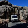 auf Umwegen zum Mount Rushmore, gerade Platz für Leopold