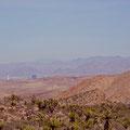 Red Rock Valley mit Blick auf Las Vegas